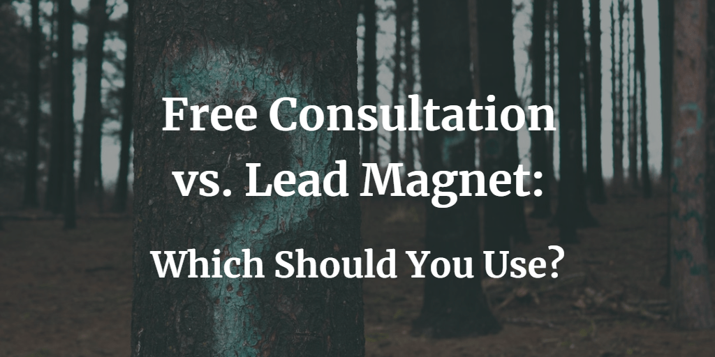 Free Consultation vs Lead Magnet - Blog Image